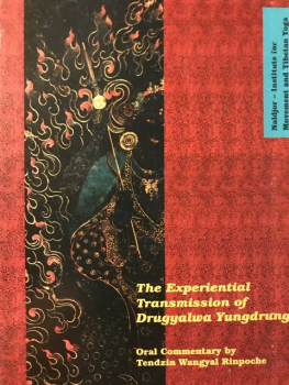 Tenzin Wangyal Rinpoche : The Experiential Transmission of Druggyalwa Yungdrung VOL 2