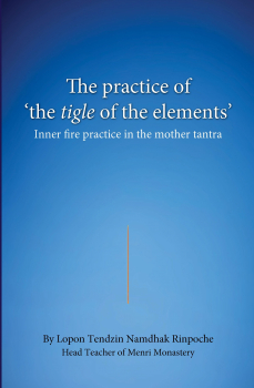 Lopon Tenddzin Namdhak Rinpoche : The practice of the tigle of the elements
