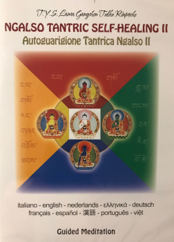 Lama Gangchen : Ngalso - Tantrische Selbstheilung II (DVD)